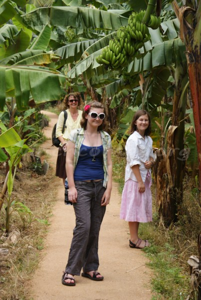 Walking between the banana trees